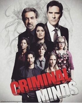 Criminal Minds - Stagione 8 (2013) [Completa] .avi DLMux MP3 ITA