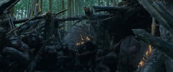 Download War.For.The.Planet.Of.The.Apes.2017.1080p.BRRip.x264.AAC-Ozlem[ETRG] Torrent